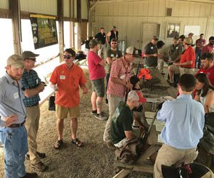 Warnell Alumni and Friends Sporting Clays Tournament