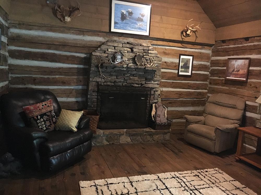 cabinliving1