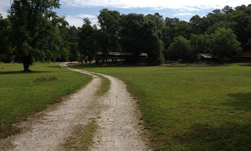 Road by Pavilion