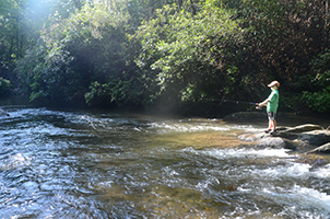 A Healthy River Starts with Small Streams