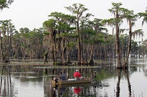 Georgia Wildlife Federation's Public Comments Regarding Twin Pines, LLC Permit Application SAS-2018-00554